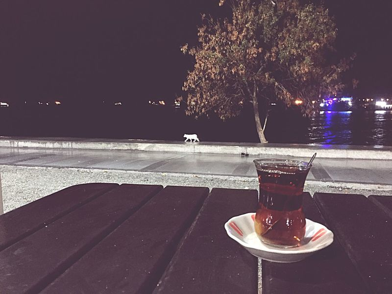 Refreshment Drink Food And Drink Freshness Table Drinking Glass No People Tree Water Outdoors Sky Close-up Night