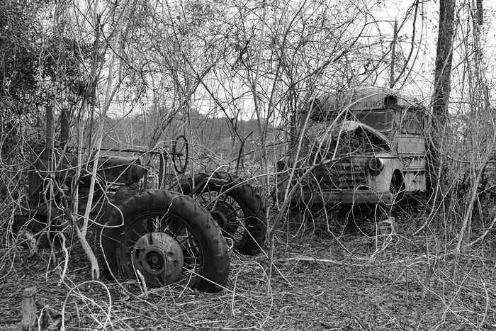 Blackandwhite School Bus Tractor Abandoned Broken Damaged Junk Cars Obsolete Ruined Taking Photos