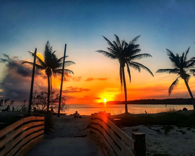Sunset Palm Tree Beauty In Nature Tree Scenics Sea Beach Nature Tranquility Tranquil Scene Sky Water Silhouette Outdoors Sun Horizon Over Water Vacations Day Florida Keys Reflection Orange Color Hurricane Irma 2017 Recovering Recovery Bridge - Man Made Structure Person sitting on beach during Florida Keys sunset.