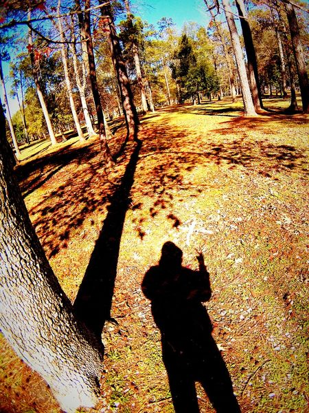 Taking Photos Check This Out Showcase : January Shadowporn Shadow Play Shadow Photography Shadow Selfie Shadow-art Shadowplay