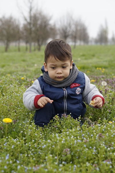Asiangirl Baby On Grass Bambino Boys Child Childhood Children Only Day Field Front View Grass Happiness Nature One Boy Only One Person Outdoors Portrait Smiling