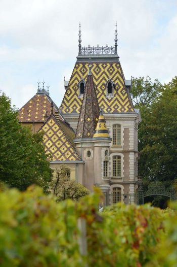 Architecture Building Exterior History Burgundy, France Wine Vineyard Winemaking Aloxe Corton Château