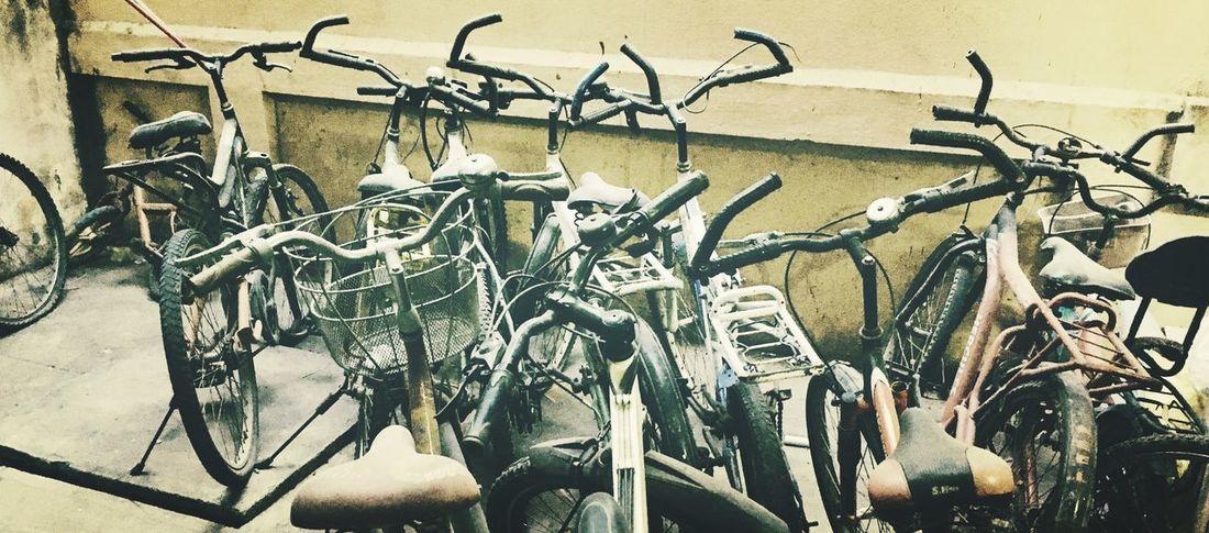 Bicycle Mode Of Transport Transportation Stationary Bicycle Rack Land Vehicle Parking