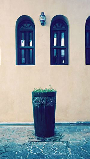 Flowers 🌺 Window Built Structure Architecture Building Exterior No People Day Plant Growth Outdoors Nature