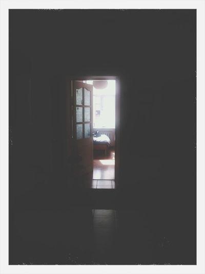 Doors to my light room.
