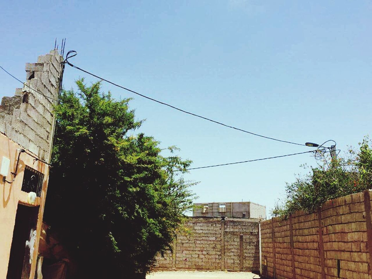architecture, building exterior, tree, cable, built structure, day, power line, outdoors, sky, no people, low angle view, electricity, telephone line