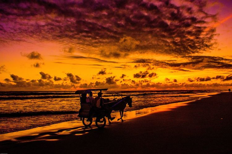The red sky in parangtritis Sunset Horse Cart Horsedrawn Silhouette Horse Sky Carriage Working Animal Horse Racing Horseback Riding Herbivorous Bridle Pony Foal Animal Pen Stable Cart Ranch Grazing Jockey Saddle Mane Donkey Livestock Camel