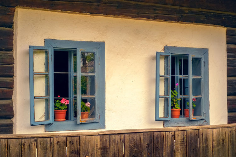 Romanian traditional wooden house with old blue windows and flowers Dimitrie Gusti Old-fashioned Romania Bucharest Romanian  Romanian House Romanian Tradition Traditional House Vintage Style Architecture Building Building Exterior Built Structure Day Fence Flower Flower Pot Flowering Plant Glass Glass - Material House Houseplant Museum No People Outdoors Plant Potted Plant Residential District Roberto Sorin Transparent Vintage Window Window Box Window Frame Window Sill Wood - Material Wooden House The Still Life Photographer - 2018 EyeEm Awards The Architect - 2018 EyeEm Awards