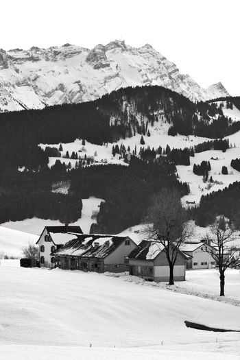 Houses on snow covered field