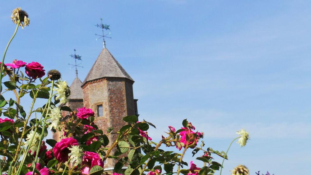 Castle Tower Roses Summer No Edit