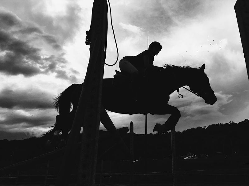 Those little seconds when we fly. Silhouette Sunset Animals Horse Equestrianphotography Horse Riding Horses Showjumper Equestrian Life Horse Life Horse Photography  Equestrian Horse Love Equestrianlife Outdoors Jumping Jump Sports Photography Sports