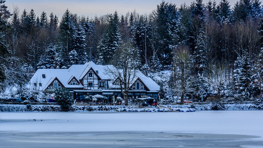 Sonnenaufgang bei Minus 12 Grad am Bergsee in Bad Säckingen Architecture Beauty In Nature Bergsee Black Forest Built Structure Cold Temperature Frozen Frozen Lake Illuminated Nature Night No People Outdoors Scenics Schwarzwald Sky Snow Tourism Travel Destinations Tree Water Winter