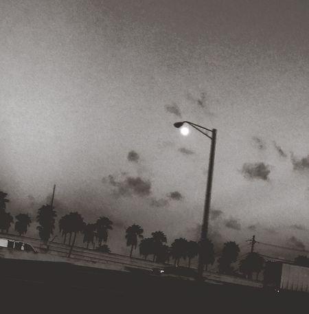 Moon acting as a street light Street Light Moon Dusk Palm Tree Sky Outdoors Nature Lamp Post Highway Blackandwhite