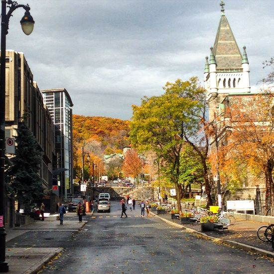 McGill University Montréal McTavishStreet Fall Beauty Enjoying Life Cool Autumn Mood