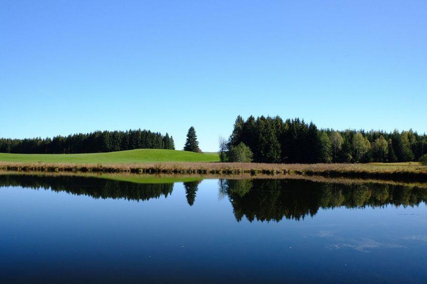 Bavarian Lake Bavarian Landscape Pfaffenwinkel Water Reflections Sky Reflection Tranquility Tranquil Scene Plant Copy Space Lake Water Scenics - Nature Blue Waterfront