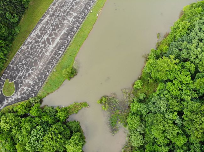 Aerial View Mavic Air Aerial Shot Dronephotography Aeriel Photo Forest Photography Trees Treelines Green Forest Textures and Surfaces Textured  Texture Nature Nature Photography Irrigation Equipment Water Rural Scene Agriculture Field High Angle View Grass Green Color Lush - Description Patchwork Landscape