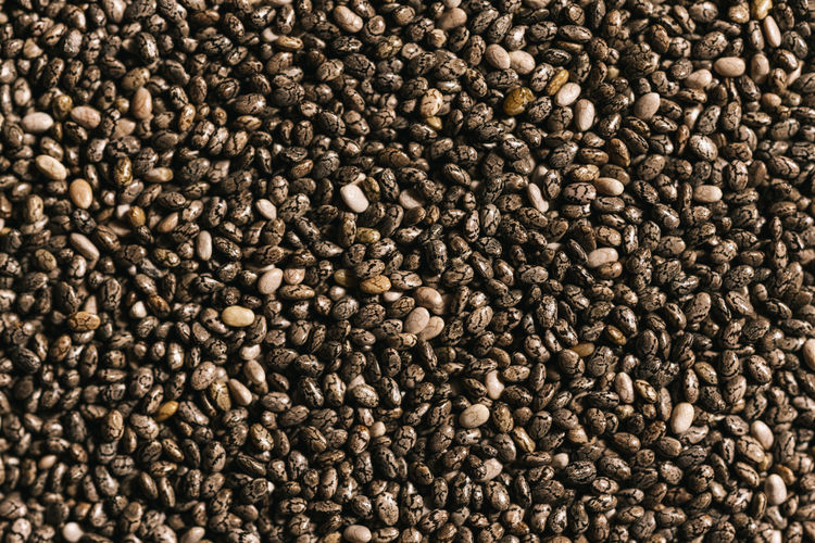 Chia seeds background Chia Chia Seeds Natural Antioxidant Backgrounds Calcium Cereals Directly Above Fatty Food Food And Drink Fresca Freshness Grain Healthy Lamiaceae Large Group Of Objects Nutrition Oil Omega Salvia Super-food Superfood Textured  Vegan