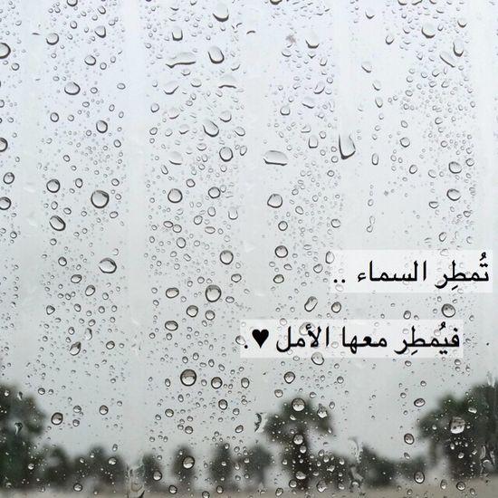 Rain ❤️!