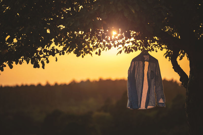 Made with Nikon Df and my 70-200mm lens. Tree Plant Sunset Hanging Nature Sky Clothing No People Focus On Foreground Orange Color Tranquility Sunlight Silhouette Scenics - Nature Beauty In Nature Outdoors Textile Growth Lifestyles Shirt Drykorn Still Life Against The Light Against The Sun