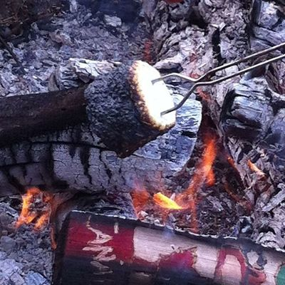 Black is back. Campfire Smore Dessert marshmellow hot