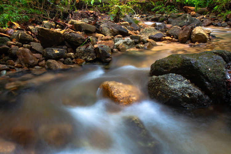 Blurred motion of stream flowing in forest