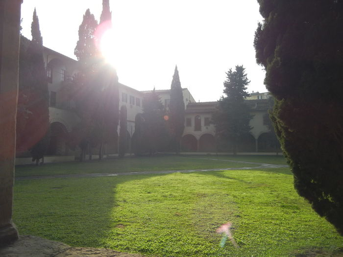 View of lawn and building in park
