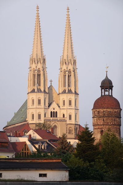 Sankt Peter Und Paul Kirche Görlitz, Nikolaiturm Church Architecture Belief Building Building Exterior Built Structure Gothic Style Nature No People Outdoors Place Of Worship Plant Religion Sky Spire  Spirituality The Past Tower Travel Destinations Tree