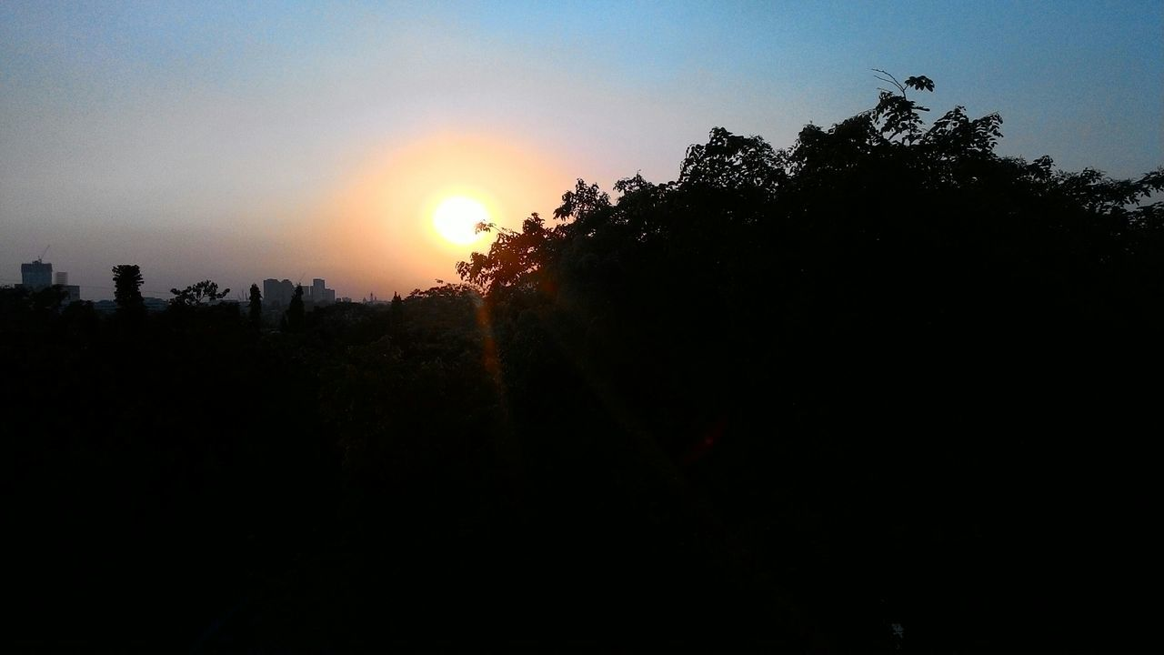 sunset, silhouette, sun, tree, sky, nature, beauty in nature, no people, sunlight, outdoors, scenics, growth, clear sky, city, architecture, day