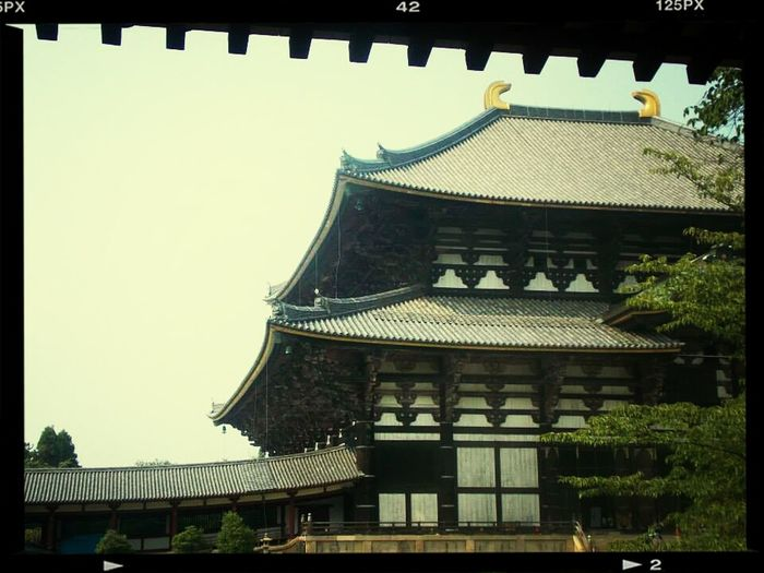 My first trip in Japan