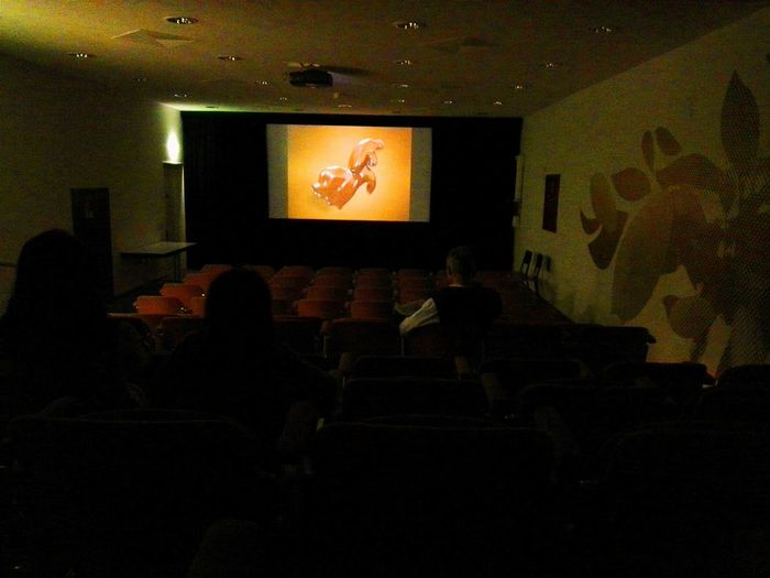 Before the tour started.....we sitting there and watching a Advertising ShortFilm about this Chocolate Factory History VSCO Digital Noise Super 8 Screen Shilhouette Wide Angle Cinema Look