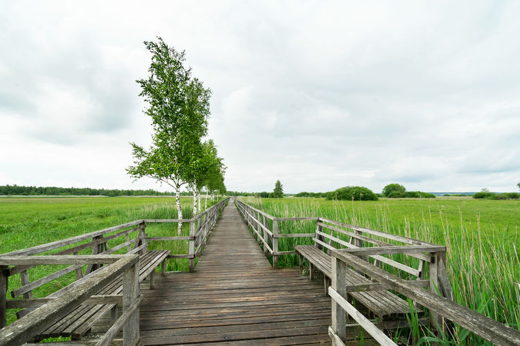 Wooden walkway amidst plants on field against sky