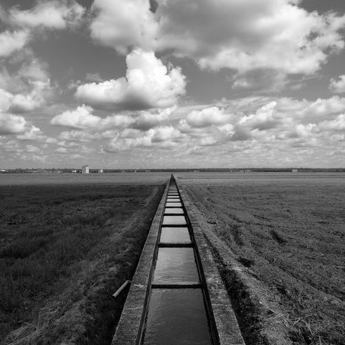 Nature Photography Blackandwhite Paddy Field