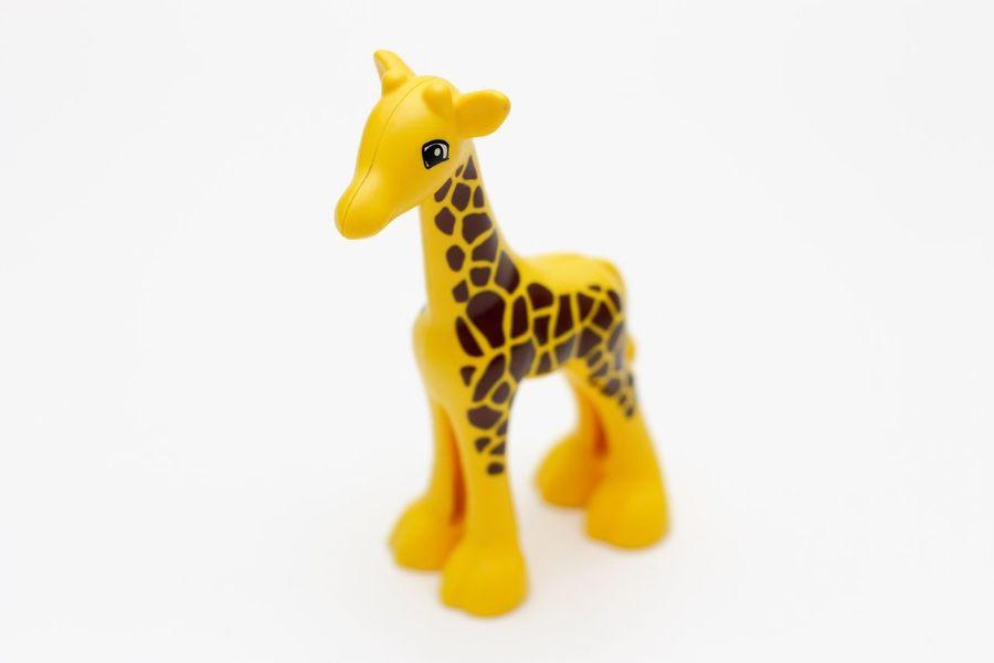 Lego Duplo giraffe Kinderspielzeug LEGO LEGO Animals Lego Duplo Lego Duplo Animals Lego Duplo Giraffe Lego Duplo Photography Lego Duplo Tiere Spielzeug Toy White Background