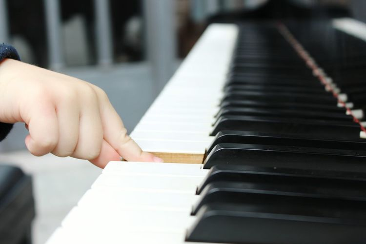 Close-up of cropped piano