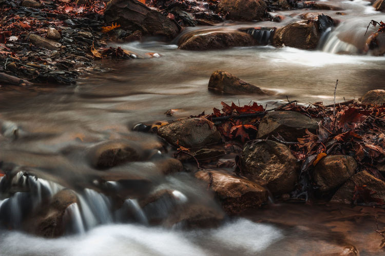 A river in autumn Red Leaves Leaves Autumn Autumn colors Autumn Leaves River Riverbank Fall Leaves Fall Colors Long Exposure Outdoors Nature Waterfall Landscape