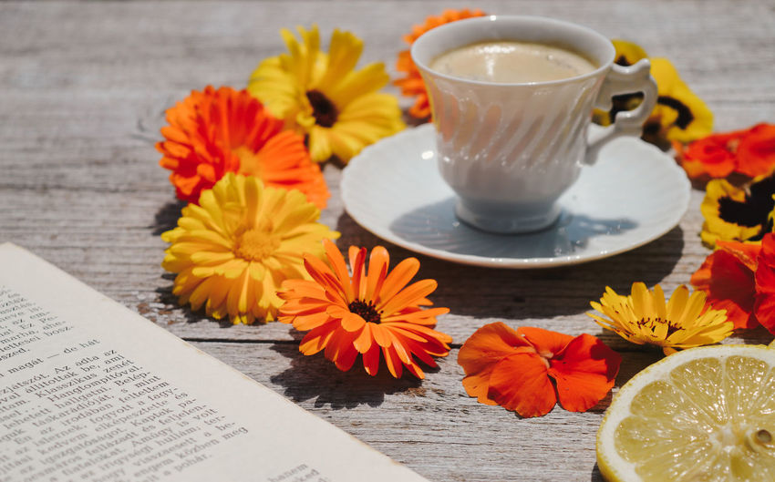 Reading Relaxing Summer Views Summertime Book Coffee Coffee - Drink Colorful Crockery Design Flower Flower Head Food And Drink Freshness Gray Background Lime Orange Color Relax Relaxing Moments Relaxing Time Rest Still Life Summer Warm Yellow Color