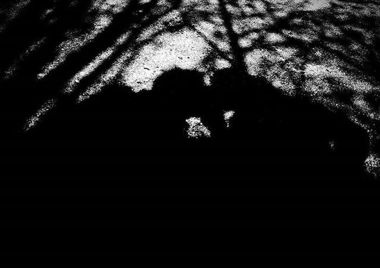 Love in high contrast. 💜 Highcontrast Contrast Blackandwhite Monochrome Love MyGIRL Meandmygirl Hiking Kiss Shadow Shadows Trix Silhouette Selfportrait Mobile PhonePhotography Sony XPERIA