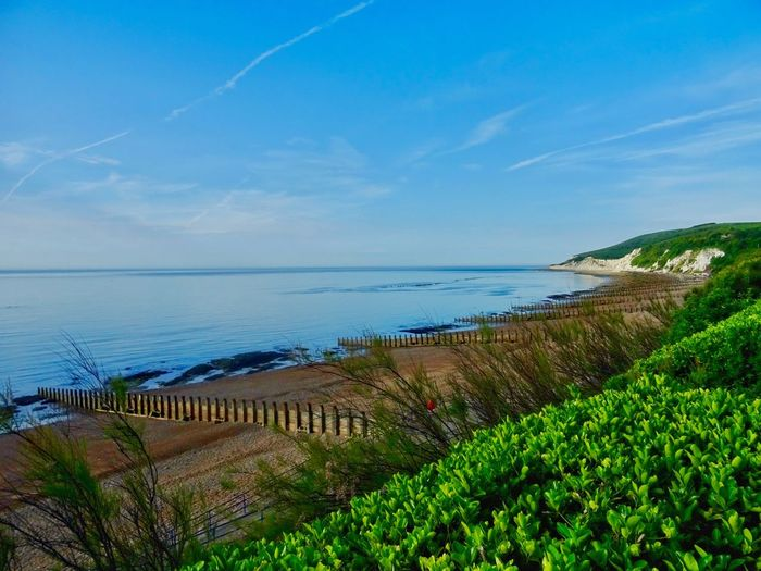 Sea Water Sky Beauty In Nature Scenics - Nature Tranquility Nature Tranquil Scene Horizon Over Water Blue Growth Beach Idyllic
