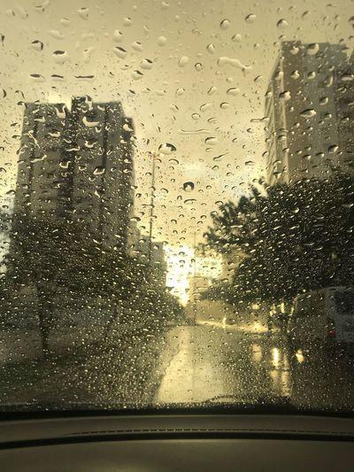 tears Wet Rain