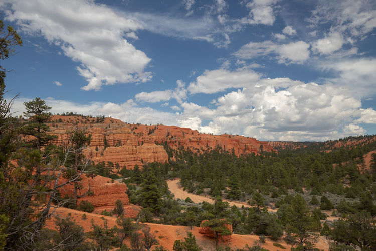 Red Canyon in Utah, USA - the smaller brother of the world famous Bryce Canyon Cloud - Sky Sky Non-urban Scene Beauty In Nature Scenics - Nature Nature No People Tranquil Scene Tranquility Red Canyon Red Canyon State Park, Utah USA National Park Environment Landscape Land Travel Plant Tree Day Outdoors Exploration Mountain Growth