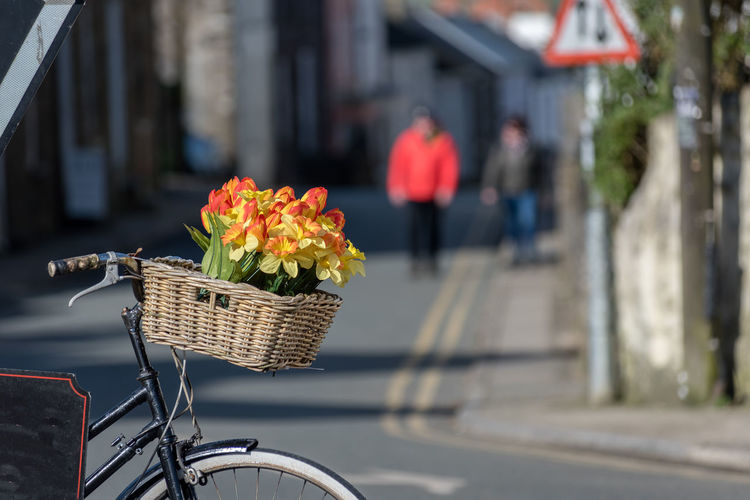 Cycle Architecture Basket Beauty In Nature Bicycle Bicycle Basket Bouquet Bunch Of Flowers City Container Flower Flower Arrangement Flower Head Flower In Cycle Busket Flowering Plant Focus On Foreground Fragility Freshness Land Vehicle Nature Outdoors St David's Street Transportation Vulnerability