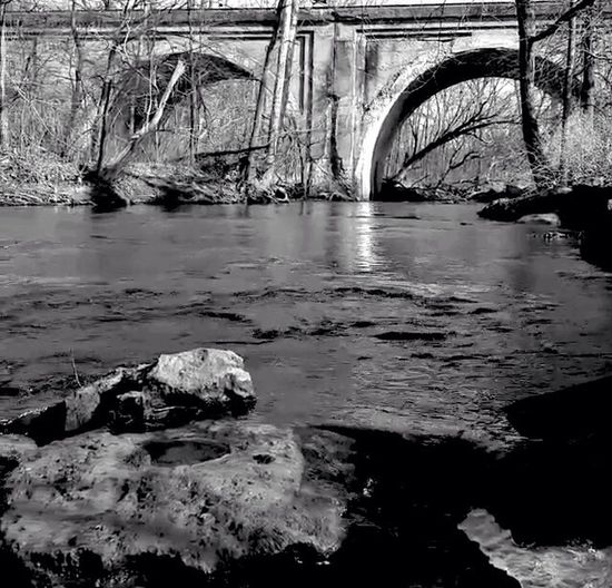 Trees Love Blackandwhite EyeEm Natue Lover Historic Fall Creek Historic Falls Park Water Beautiful Nature Hugging A Tree Connected With Nature