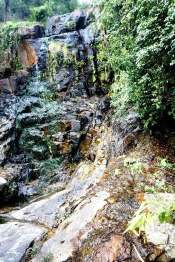 Pokfulam Paradise Historical Place Secret Garden Thepeak HongKong 2017
