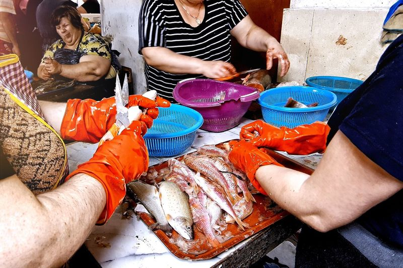 Fate of the fish Fish Fish Market Batumi Red Gloves Red Human Hand Togetherness Men Women Friendship High Angle View Close-up