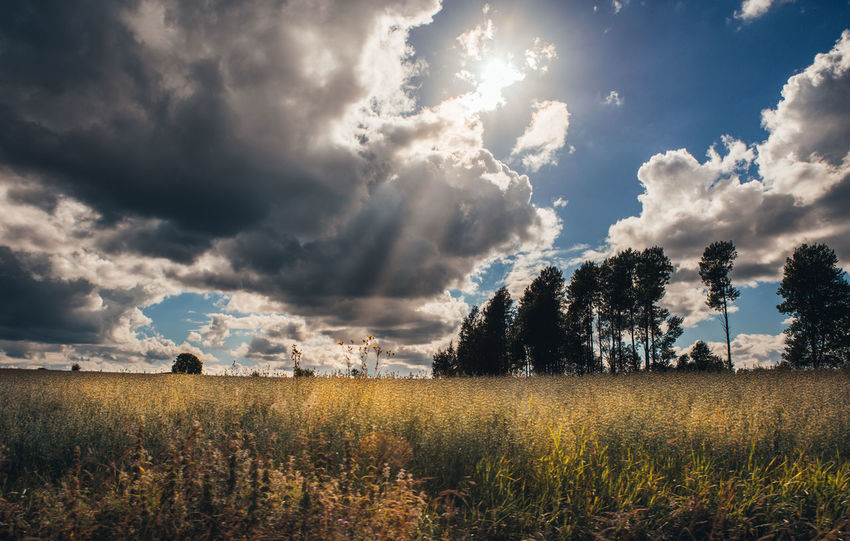 Beauty In Nature Cloud Cloud - Sky Clouds Cloudy Day Field Grass Grassy Growth Horizon Over Land Landscape Nature No People Non-urban Scene Outdoors Rural Scene Scenics Sky Sky Clouds Sun-rays Sunray Sunrays Tranquil Scene Tranquility