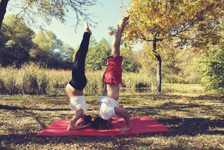 Couple doing yoga in autumn city park Pregnant woman Upside down. Selective focus Autumn Couple Exercise Man Practice Relaxing Woman Yoga Activity Balance Belly Caucasian Healthy Lifestyle Heterosexual Couple Lake Leisure Activity Nature Outdoors Park Partner Pregnancy Pregnant Smiling Sport Togetherness