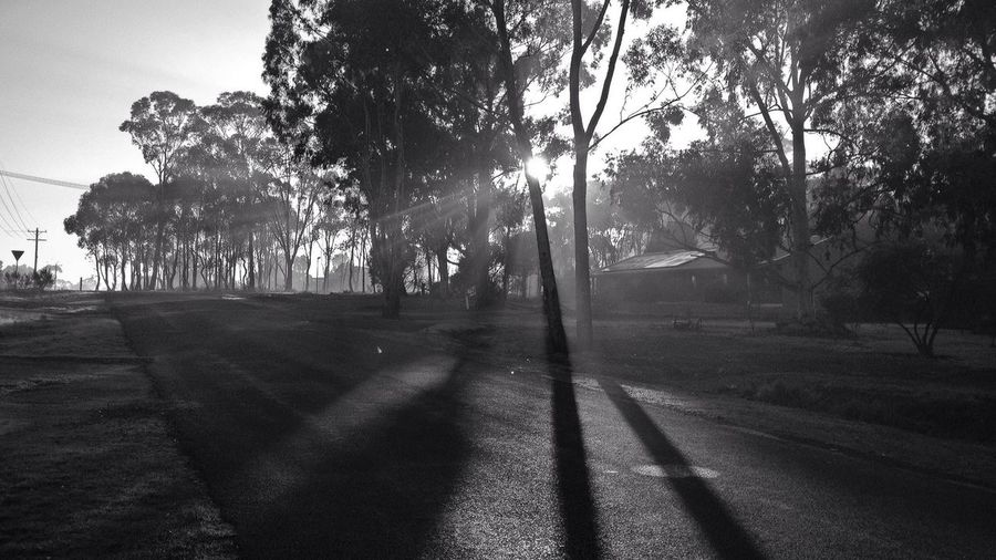 Morning Shadows IPhoneography Blackandwhite Don't Be Square