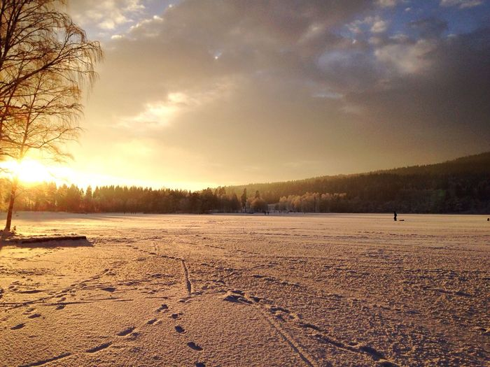 Enjoying The Sun and the Snow at Sognsvann in Oslo Norway . Eye4photography  EyeEm Best Shots EyeEm Nature Lover Winter Wonderland