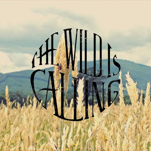 Vintage Melbourne Rocks Photography Upper Yarra Valley Yarra Valley Grass Mountains The Wild Is Calling