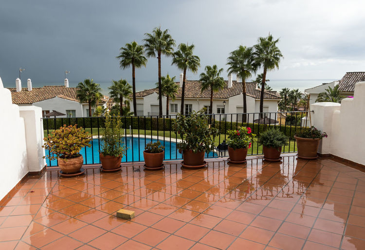Stormy skies over Alcaidesa, Spain Plant Tropical Climate Flooring Swimming Pool Palm Tree Water Sky Tiled Floor Built Structure Stormy Sky Stormy Skies Storm Cloud Wet Weather Stormy Palm Trees Reflections Reflections In The Water Terrace View Terrace Plants Potted Plant Building Exterior Tree